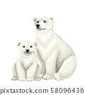 White bear with baby cub. Vector isolated characters on white background. 58096436