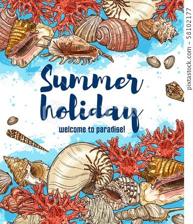 Ocean seashells, welcome to paradise 58102177