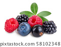 mix of blackberry blueberry raspberry black currant with leaf isolated on white background. 58102348