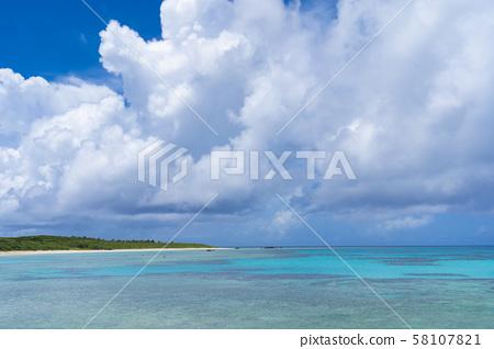 [Hateruma島] Hateruma藍色四足動物 58107821