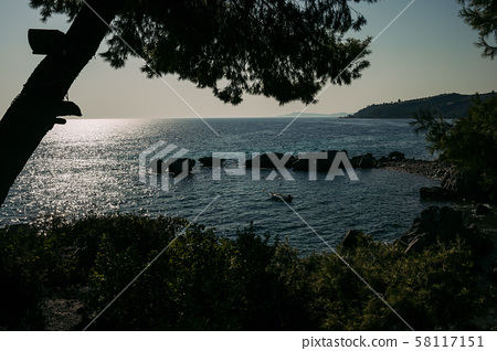 View through the pine trees in Greece 58117151