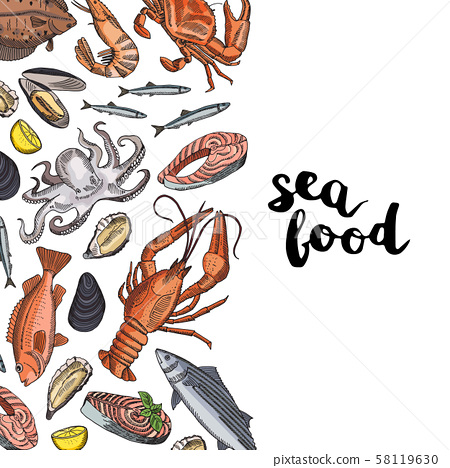 Vector background illustration with hand drawn colored seafood elements and lettering 58119630