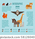 Zoo animals vector infographic 58126040