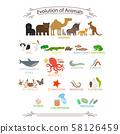 Biological evolution animals 58126459