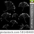 Dandelion 3D Illustration. Tree correction design set. Illustration of fluff dandelion, blossom flora white on black colour. 58148460