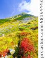 初秋的佐敦山(垂直) 58154443