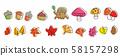 가을의 식물 버섯 도토리 단풍 58157298