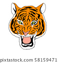 Illustration of the head of an orange Asian tiger with all its wavy stripes 58159471