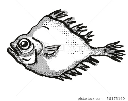 smooth oreo New Zealand Fish Cartoon Retro Drawing 58173140