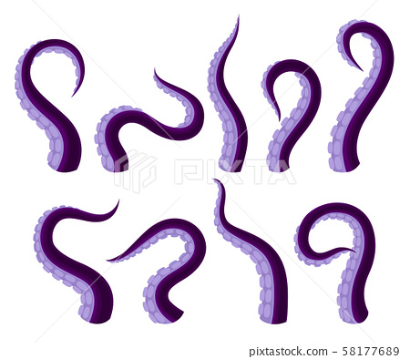 Set Of Vector Illistrations Of Octopus Or Squid Tentacles 58177689