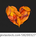 Heart of fallen bright leaves on chalkboard background 58200327