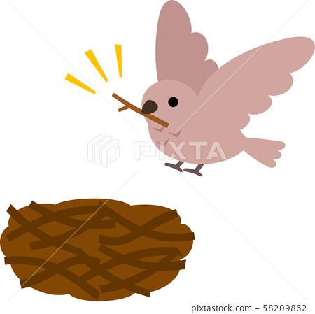 野鳥在樹枝上carrying著樹枝 58209862