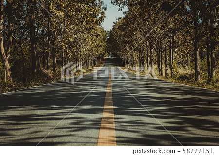 Landscape with the image of country highway in a forest 58222151