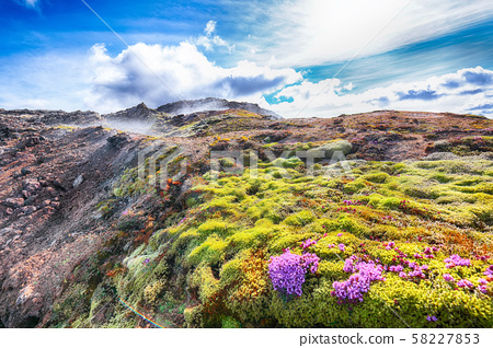 Exotic view of lavas field in the geothermal 58227853