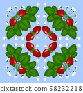 Figure, illustration. Bush strawberries with three red berries and white flowers. 58232218