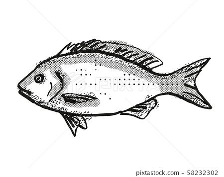 Blue Drummer Australian Fish Cartoon Retro Drawing 58232302