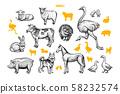 Farm animals hand drawn vector illustrations set 58232574