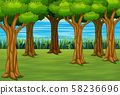 Forest background with a river landscape 58236696