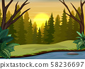 Forest landscape on sunset scene with dry trees 58236697