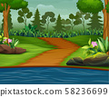 Road to the river with a forest background 58236699