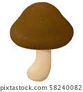 Mushroom Shimeji Shiitake Shiitake 58240082