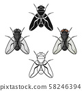 Fly icon in cartoon,black style isolated on white background. Insects symbol stock vector 58246394