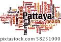 Pattaya word cloud 58251000