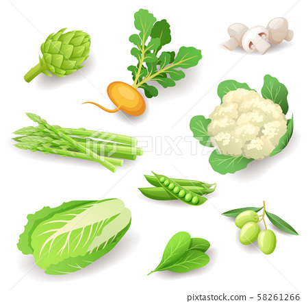 Fresh organic vegetables icon set isolated, healthy food, artichoke, turnip, mushrooms, asparagus 58261266