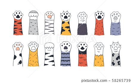 Cat paws. Doodle animal foot, cute cartoon kitten and puppy paws, wild and domestic animals foots 58265739