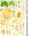 Cantaloupe Melon Collection Abstract 58274241