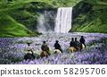 Tourist ride horse at Skogafoss waterfall Iceland. 58295706