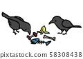 음식물 쓰레기를 쪼아 까마귀 58308438