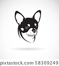 Vector of chihuahua dog isolated. Animal. Pet. 58309249