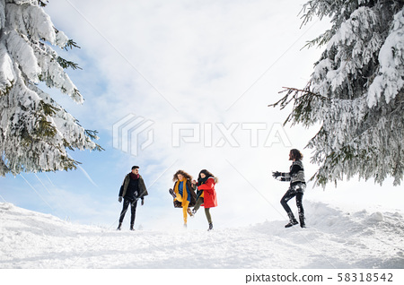 Group of young friends on a walk outdoors in snow in winter forest, having fun. 58318542