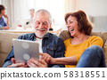 Group of senior people using laptops and tablets in community center club. 58318551
