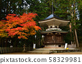 Autumn leaves of Koyasan 58329981