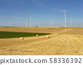 Windturbines in a yellow and green farmland 58336392