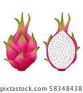 Dragon fruit isolated on white background. 58348438