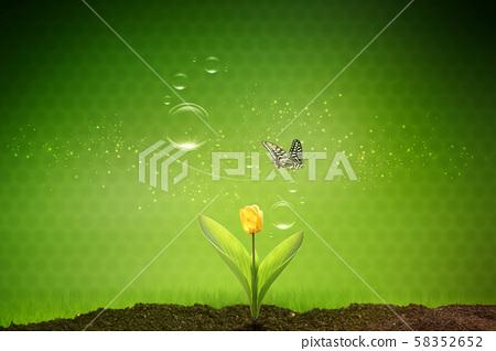 季節,風景 58352652