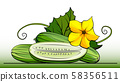 Illustration group of cucumbers with half on line. 58356511