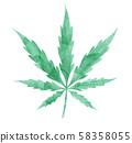 watercolor Marijuana leaf isolated on white 58358055