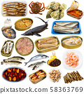 Raw and semi-finished fish, mollusks, crustacean on white 58363769