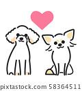 狗的姿势面部表情2玩具贵宾犬奇瓦瓦州 58364511