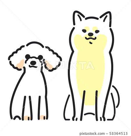 강아지 포즈 표정 2 마리 시바 토이 푸들 58364513