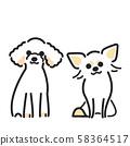 강아지 포즈 표정 2 마리 토이 푸들 치와와 58364517