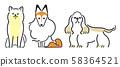 강아지 포즈 표정 3 마리 시바 셰틀 랜드 쉽독 아메리칸 코커 스패니얼 58364521