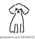 강아지 포즈 표정 1 마리 토이 푸들 58364532