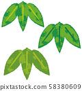 연하장 소재 대나무 대나무 일러스트 58380609