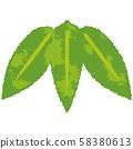 New Year's card material bamboo bamboo illustration 58380613