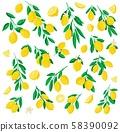 Abstract illustration of lemon. 58390092
